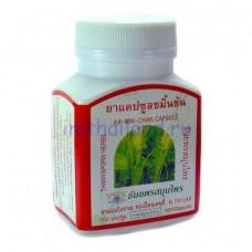 Камин Чан тайские капсулы для лечения желудка 100 шт