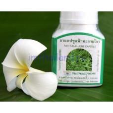 Тайские капсулы для лечения простуды и гриппа Фа-Талай-Джон (Fah-Talai-Jone) 100 капсул